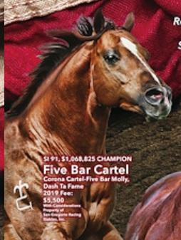 five bar cartel