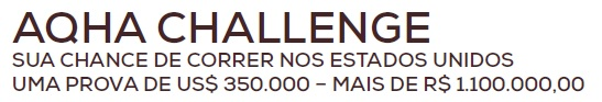 CHALLENGE TESSER