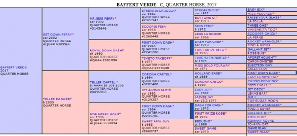 baffert pedigree