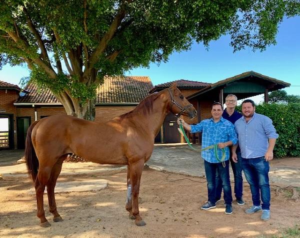 GET DOWN PERRY com Marcelo Ibañes e Dr. Raul Senhorini