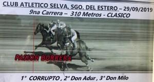 zorro 29.09