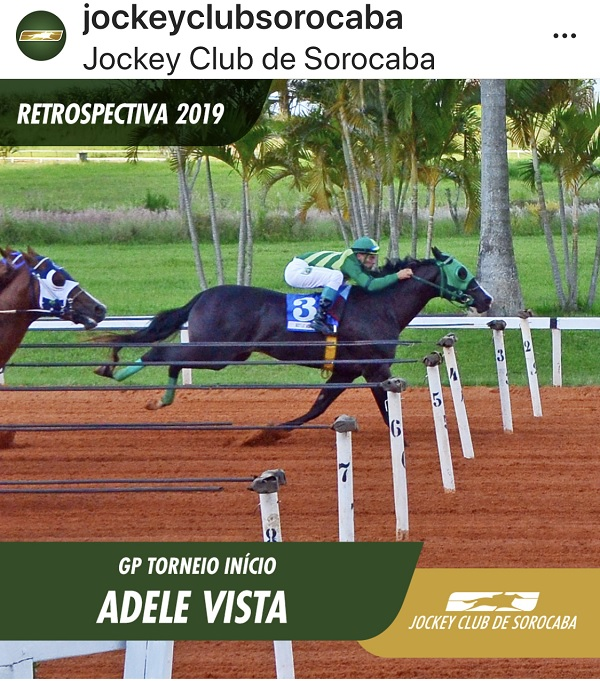 ADELE VISTA (NO SECRETS HERE x HOPEFUL EYE, por Mr Eye Openner)