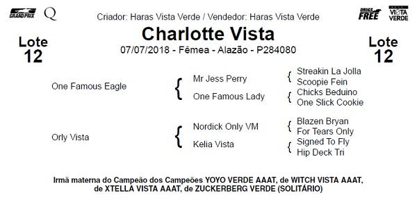 charlotte 12